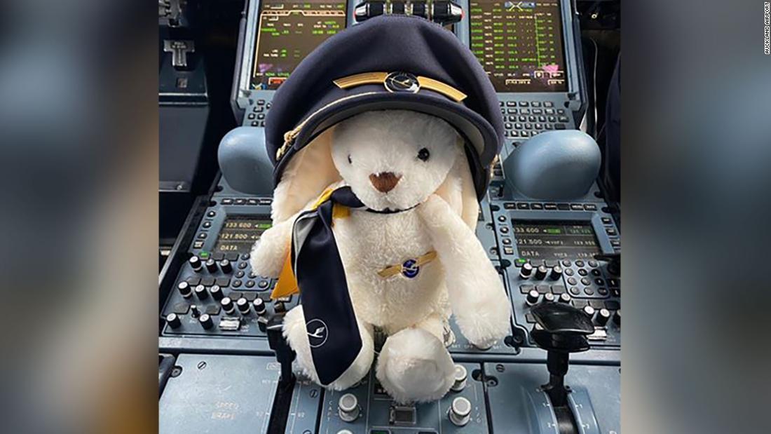 Il coniglietto di Pasqua di nome Jacinda vola come unico passeggero in volo per recuperare i tedeschi bloccati in Nuova Zelanda