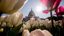 Il Congresso deve affrontare un test di leadership definitivo