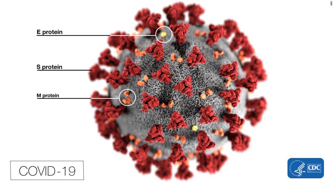 Gli studi statunitensi sul possibile coronavirus sono iniziati nel laboratorio cinese, non sul mercato