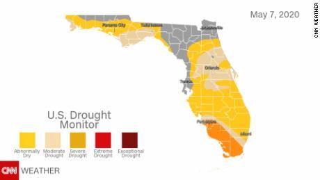 Florida monitor della siccità