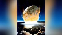 L'asteroide che ha distrutto la maggior parte delle vite sulla Terra era un focolaio di batteri. Furono i primi organismi a rimbalzare